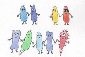 Сказка про бактерию Биффи