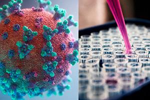 Что облегчает течение COVID-19: микробиолог из Новосибирска прокомментировала китайское исследование
