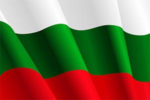 ИЦК: Визит делегации Болгарии