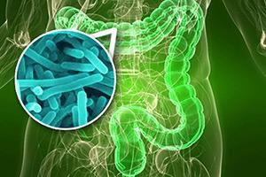 Пробиотики против ковида: как это работает