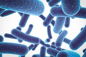 Что такое пробиотики и для чего они нужны людям
